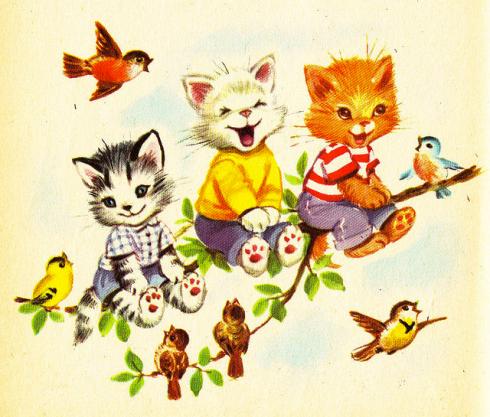 seven wonderful cats