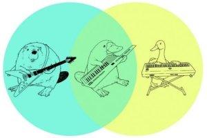 beaver venn diagram