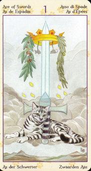 pagan-cats-08684